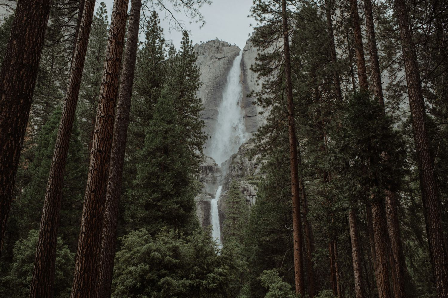 Yosemite elopement photographer_0372