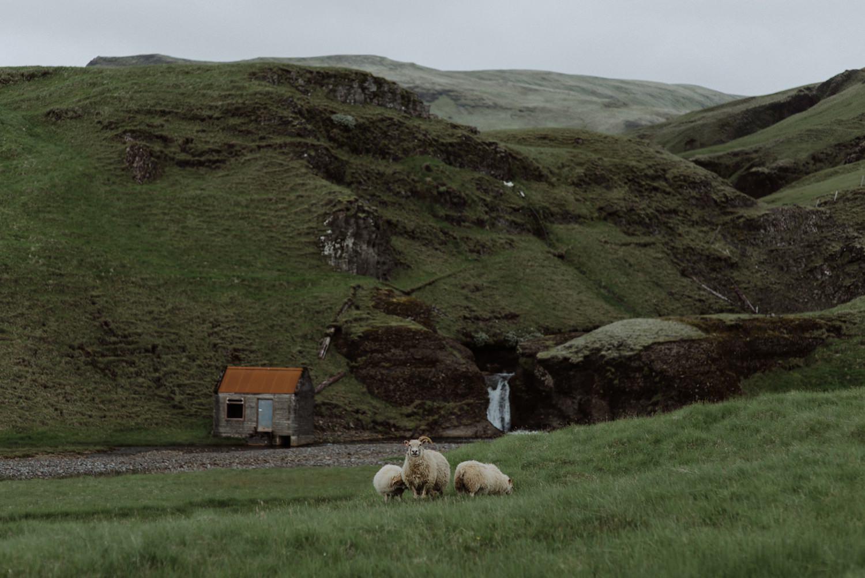 Iceland wedding photographer_0184