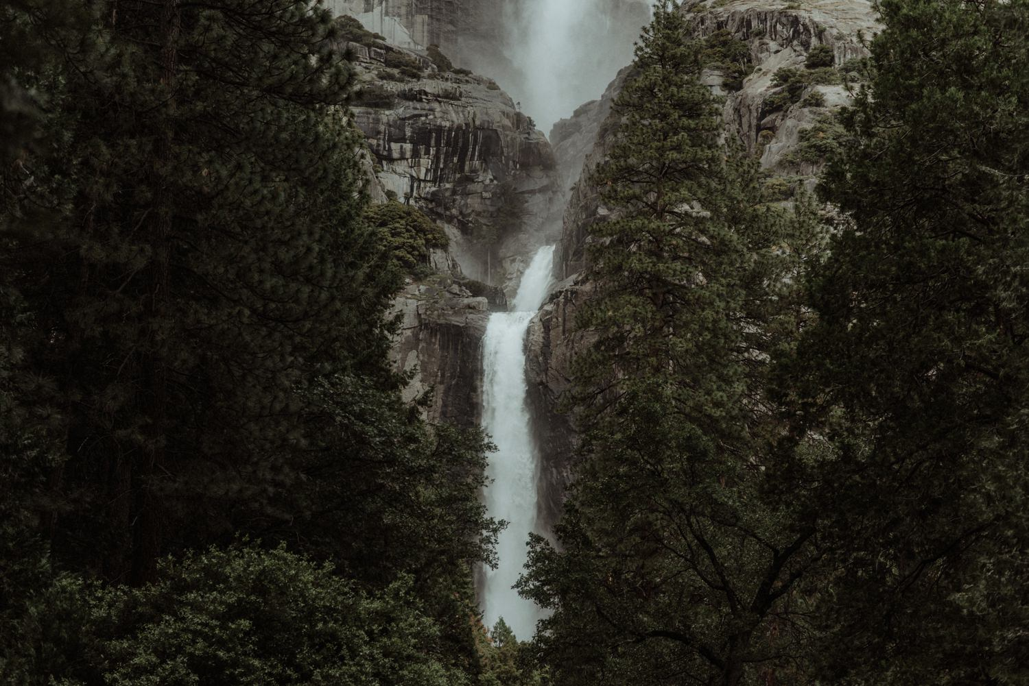 Yosemite elopement photographer_0370
